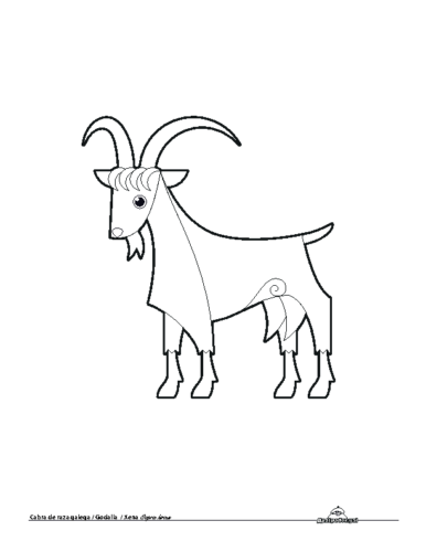 Cabra. Colorear